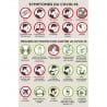 Affiche « Symptômes COVID-19 »
