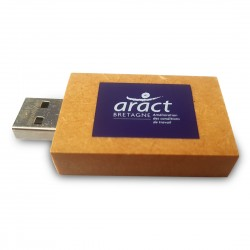"Clé USB en carton ""PaperDrive Priority"""